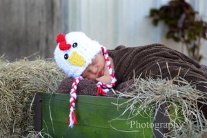 Baby Chicken Hat by Critters Cakes and Knits